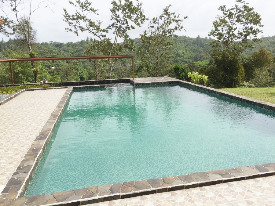 homes in Arenal for sale